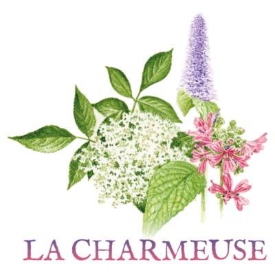 Tisane-La-charmeuse-400x400-1-1.jpg